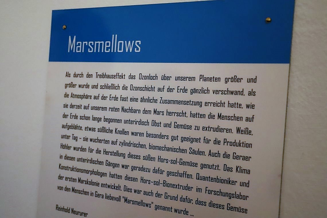 Marsmellows, Reinhold Neururer. Foto: Knut Kuckel